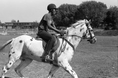 Soweto Equestrian Centre, Rockville, February 2016