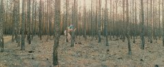 Marko Zink, I never promised you anything_4338_11, from the series In the forest:tragedies, 2021, analogue panorama photography, matt Diasec, mounted, 73 x 180 cm, Edition 3 + 2AP