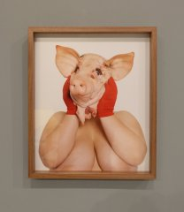 FAT PIG, 2015, Performative Installation (solo show) Defibrillator Gallery, Chicago