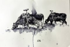 cows, 2018, ink on paper, 30 x 21 cm
